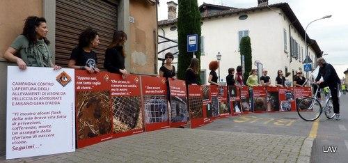 Manifestazione contro le pellicce - LAV
