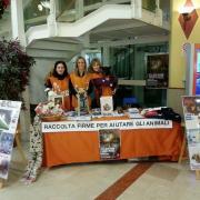 I nostri attivisti di Trieste