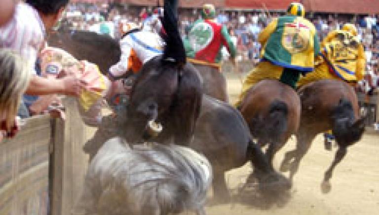 Palio di Siena, in corsa fantino sospeso per 10 anni da Palio di Asti e indagato!