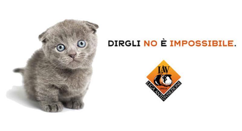 Il 6, 7 e 8 dicembre scendi in piazza con noi per i diritti degli animali