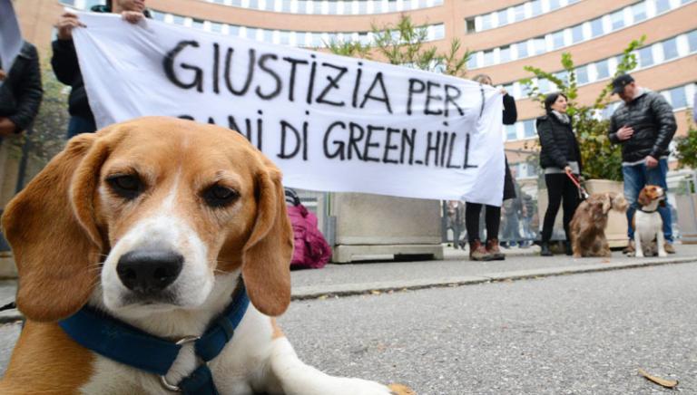 Processo Green Hill: lunedì 22 dicembre l'ultima udienza