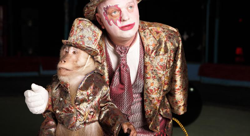 Animali al circo: anche i Paesi Bassi approvano il divieto. Italia fanalino di coda