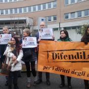 La riscossa dei beagle al Tribunale di Brescia
