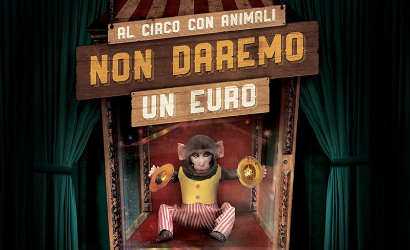 Al circo con animali non daremo un euro. Sostieni la nostra nuova campagna