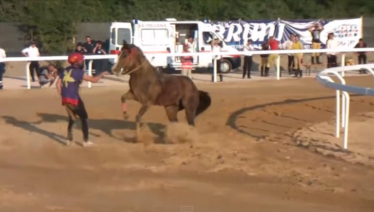 Palio Castel Madama:ennesimo cavallo ferito. Dubbi sulla sua sorte