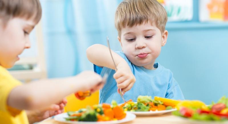 Bimba ricoverata per malnutrizione: sbagliato attaccare scelta vegan