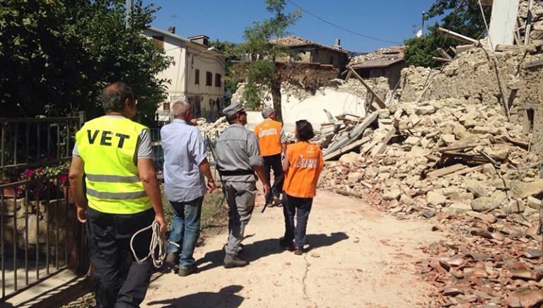 La LAV impegnata per animali e umani nelle zone del terremoto