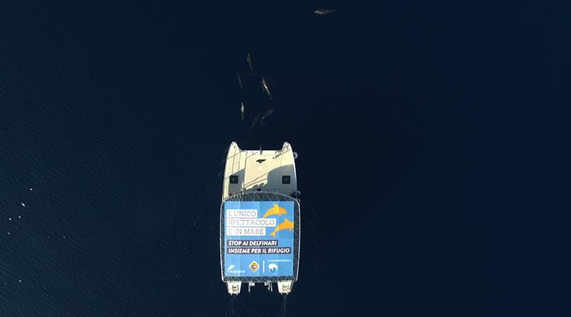 Dolphin Watching: foto in mare a Taranto del catamarano visto dal drone
