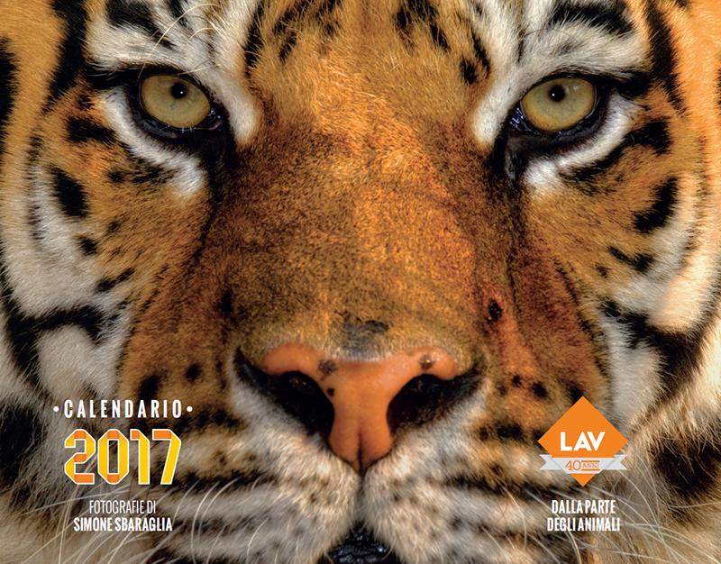 Gli animali ci guardano. Nel 2017 scegli i calendari e le agende LAV