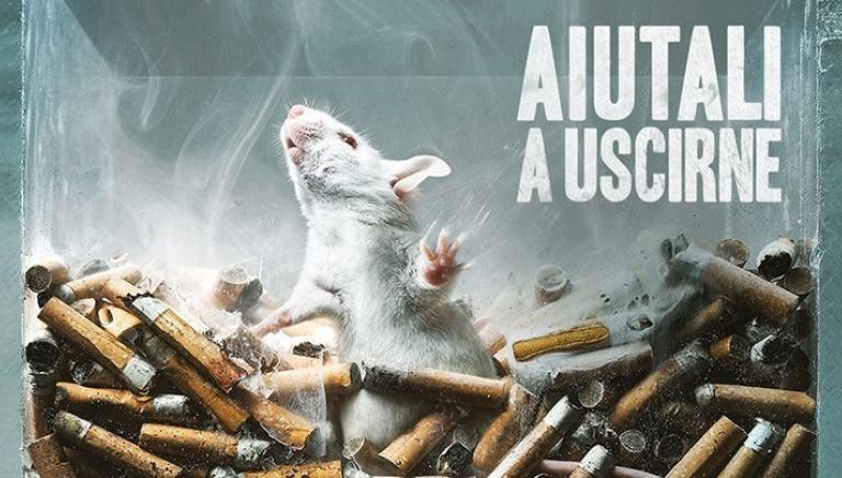 Sostanze abuso, appello a Senatori: dicano no a proroga test animali