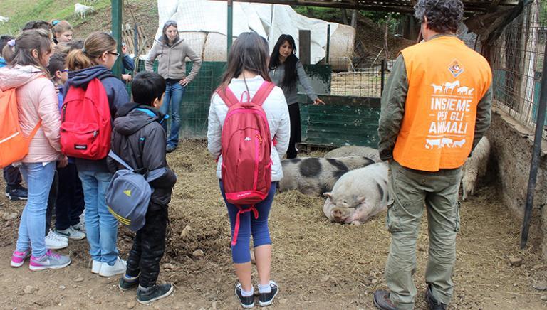 Gli studenti incontrano gli animali con LAV e VITADACANI