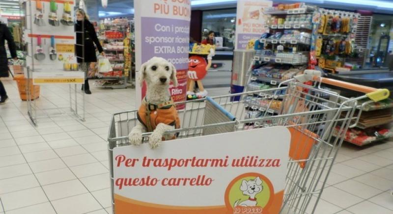 Cani in negozi e supermercati: Min. Salute rettifichi nota che vieta accesso