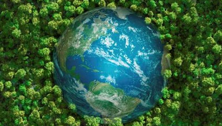 Giornata Mondiale dell'Ambiente: il clima lo cambi tu