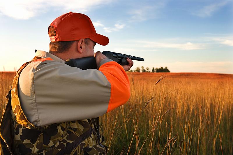 Un uomo a caccia: le associazioni animaliste e ambientaliste chiedono un rinvio dell'inizio dell'attività venatoria (fonte immagine: lav.it)