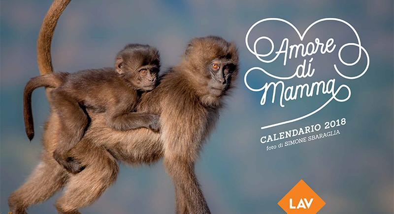 """""""AMORE DI MAMMA"""" Il calendario 2018 della LAV. Richiedilo ora!"""