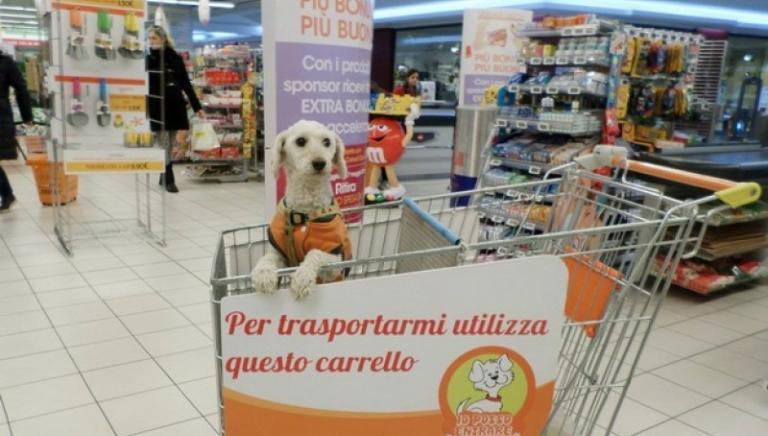 Cani nei supermercati: perchè l'informativa PAM non è corretta