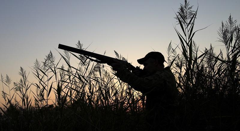 Lombardia, cacciatori senza vergogna: voti in cambio di caccia selvaggia?