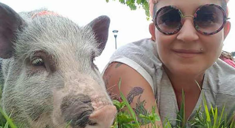 Il maialino Elvis potrà continuare a vivere con la sua famiglia umana