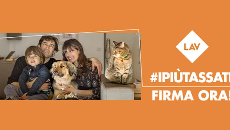 Nelle famiglie #ipiùtassati sono gli animali. Firma per combattere questa ingiustizia