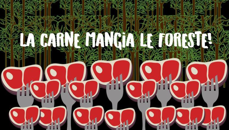 Per il Pianeta, e le sue foreste, il futuro deve essere veg, senza se e senza ma!