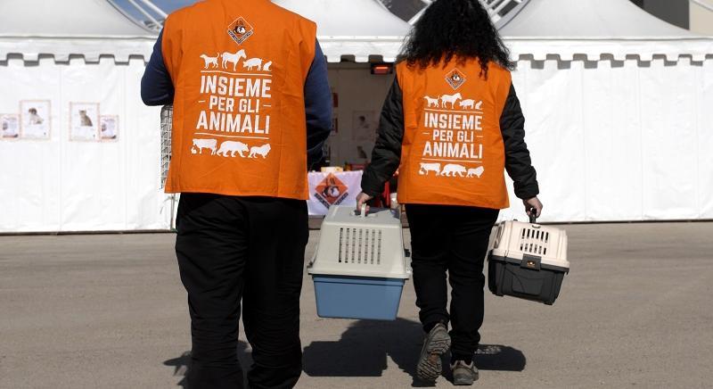 """Tutela animali sarà riconosciuta """"di interesse generale e utilità sociale"""""""