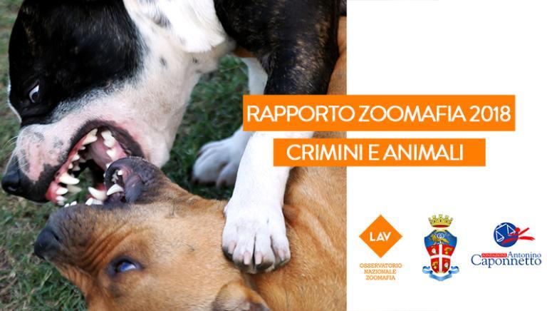 Presentazione Rapporto Zoomafia 2018. Crimini e Animali
