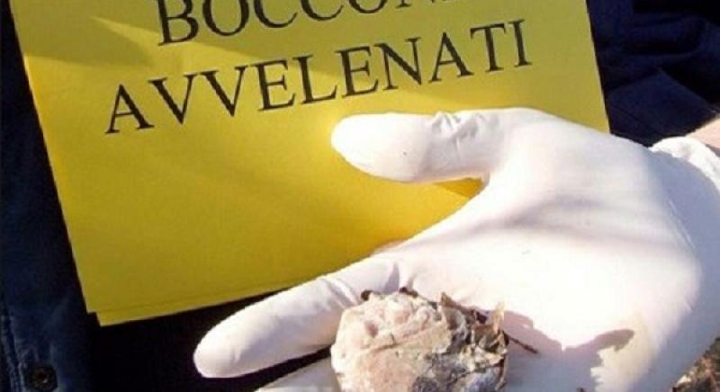 Bocconi avvelenati: bene rinnovo Ordinanza, ma occorre una Legge!