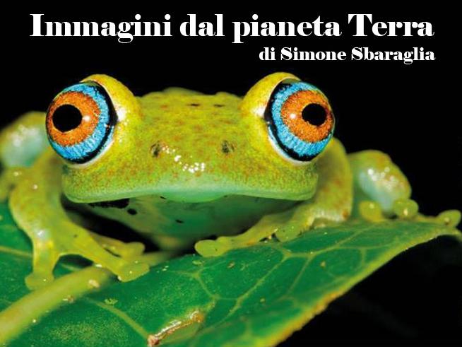 """""""Immagini dal pianeta Terra"""" mostra fotografica di Simone Sbaraglia (Roma 12-27 febbraio)"""