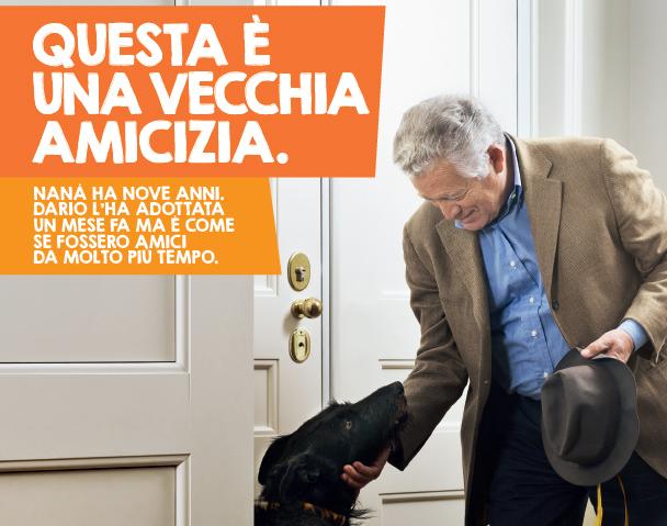 """""""Questa è una vecchia amicizia"""": presentazione a Milano"""