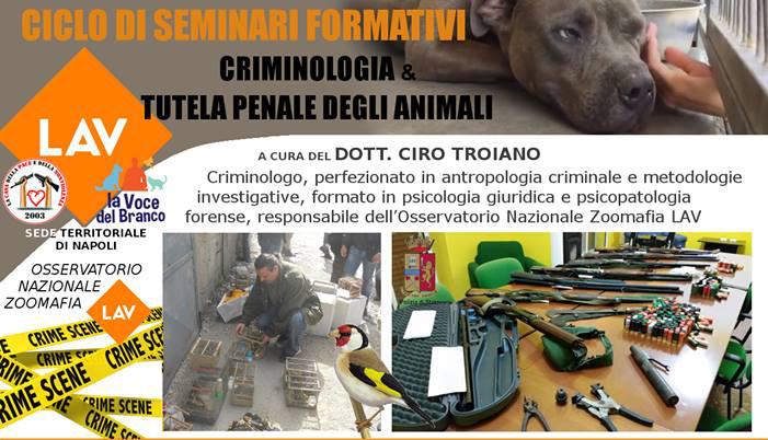 CICLO DI SEMINARI FORMATIVI CRIMINOLOGIA E TUTELA PENALE DEGLI ANIMALI
