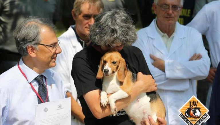 Green Hill, un anno fa il sequestro dei beagle!