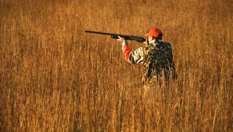 Allarme caccia, serve l'aiuto di tutti voi!