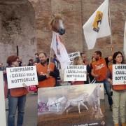 Presidio LAV anti-botticelle