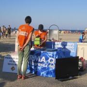Rimini - il tavolo LAV