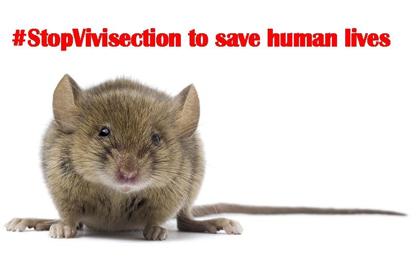 Una foto per fermare la vivisezione in Europa