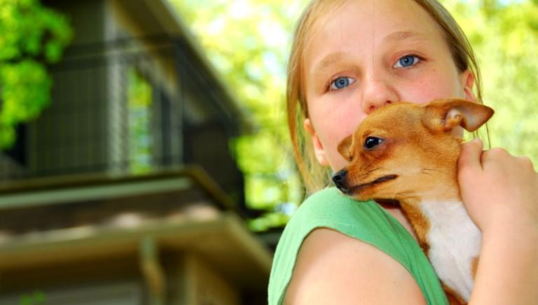 Animali e ragazzi: 1500 studenti rispondono al nostro questionario sui sentimenti e i comportamenti.