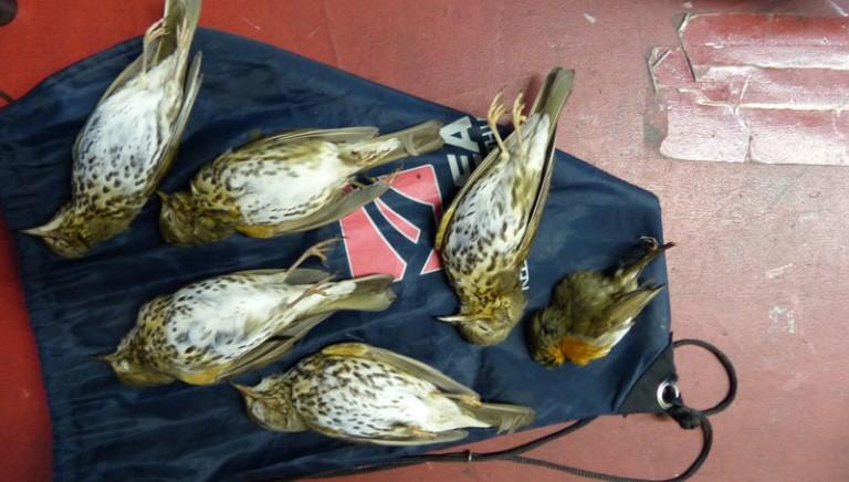 Ancora uccellatori nel cagliaritano. Intervenuti anche i volontari LAV Cagliari.