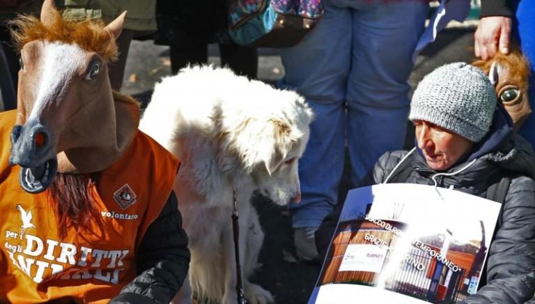Flash mob delle associazioni animaliste contro nuove scuderie delle botticelle a Villa Borghese