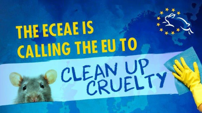 ECEAE - Clean Up Cruelty