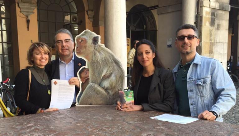 Salvi da sperimentazione i macachi di Modena. Gli garantiremo un futuro