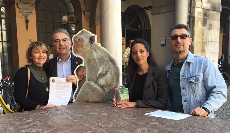 I macachi di Modena sono salvi