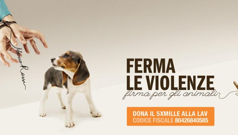 52.705 + 5x1000 = Grazie, per i diritti degli animali!