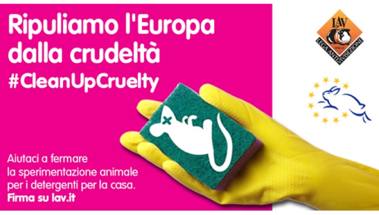 #cleanupcruelty: international campaign to demand the ban on animal experiments