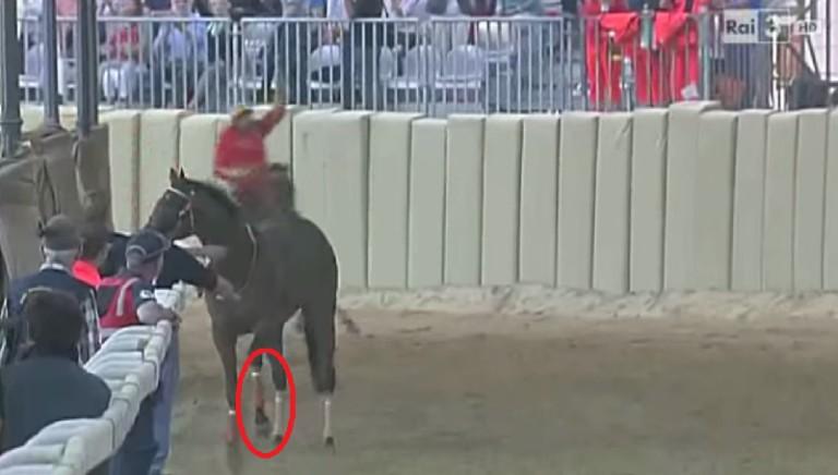 Palio di Asti: cavallo si infortuna, chiediamo notizie