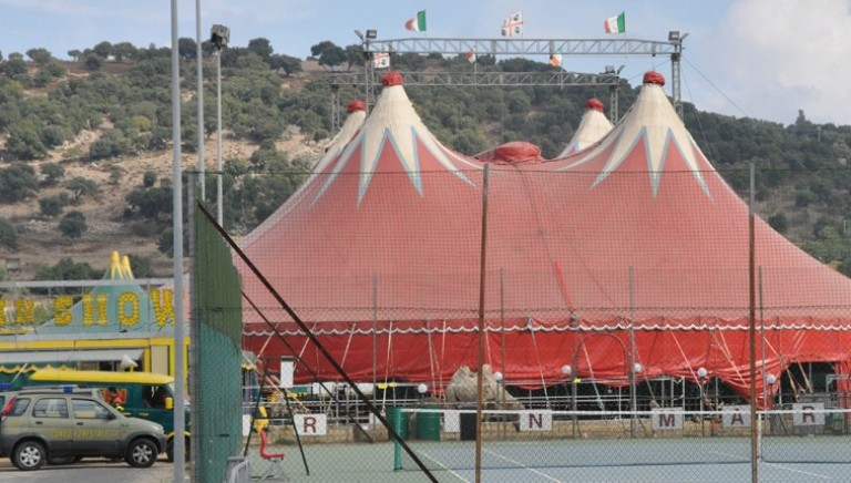 """""""Golden Circus"""": altri 14 arresti per favoreggiamento immigrazione"""