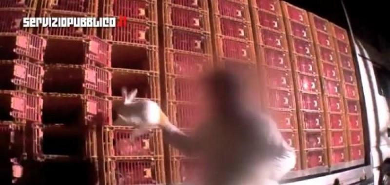 Un frame del video pubblicato da Servizio Pubblico su Il Fatto Quotidiano
