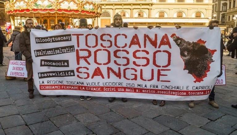 Toscana, la legge ammazza-cinghiali al voto decisivo. Fermiamola!
