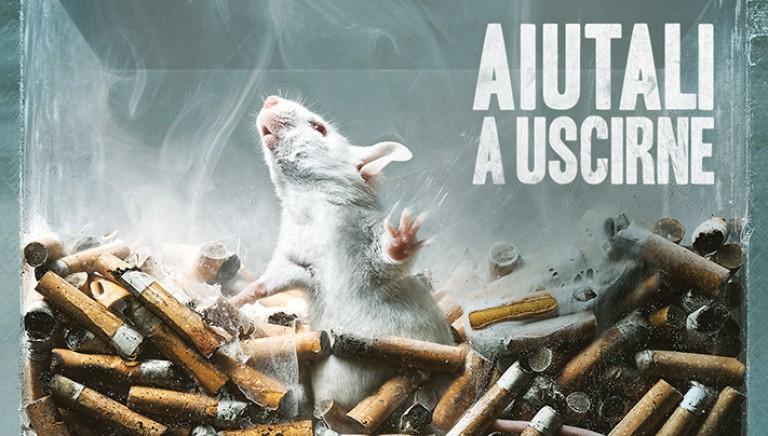 Il 9 aprile a Torino manifesteremo contro la vivisezione