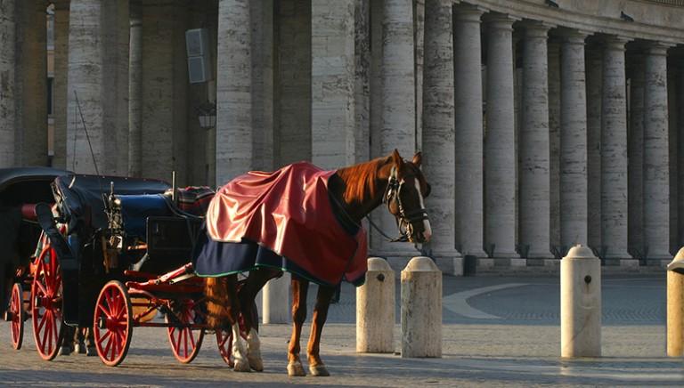Botticelle LAV a Giunta  Roma: a quando l'abolizione?
