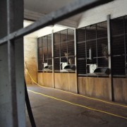 2013 - Leoni nella struttura interna